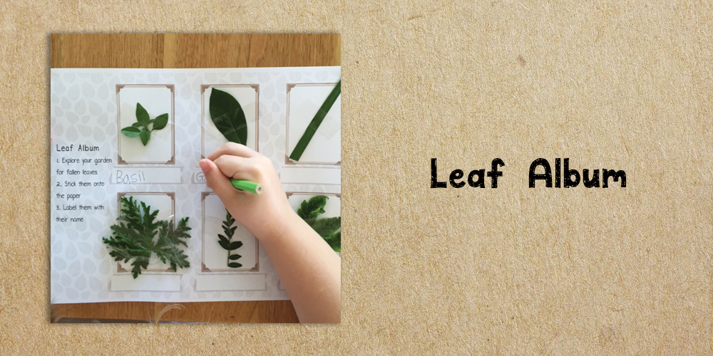 leaf album - Website Activities